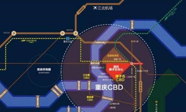弹子石人口_集约土地利用论文,关于基于空间数据挖掘的重庆土地集约利用空间