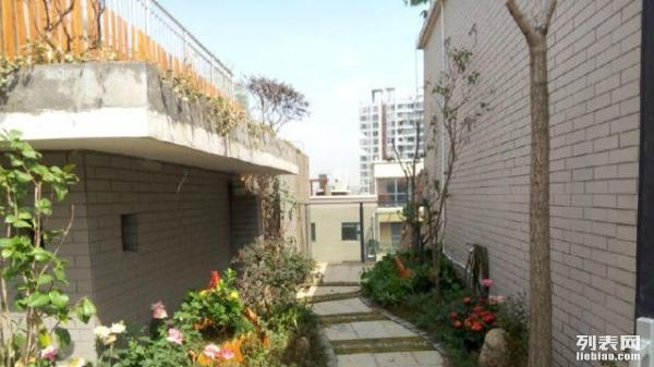专注打造屋顶花园阳台绿化别墅绿化及改造