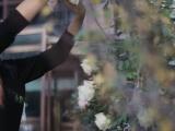新疆婚礼跟拍-新疆梦想家婚礼电影工作室