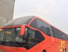 宇通 旅游团体客车转让宇通61座豪华大巴
