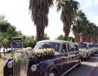 本公司长期出租各种婚礼车 劳斯莱斯 奔驰 保时捷