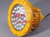 40颗LED灯珠免维护防爆LED灯80w 100w