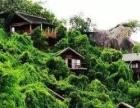 海岛一站式: 红树湾、东方文化苑、分界洲岛8日游