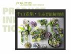 千山素集植物墙公司室内家庭植物墙设计定制