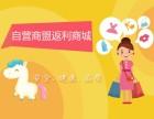 郑州网站定制开发微信二次定制开发御之谷