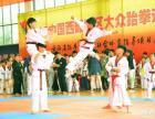 嵩明跆拳道协会 跆拳道培训 常年招生