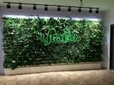 商场办公室仿真植物墙 真的植物墙 别墅园林景观公司