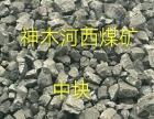 邯郸国友煤炭直销