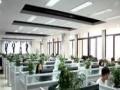 天津大学专、本科免试 建筑、经济、机械、工商管理招生
