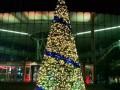 家家福媒体出租圣诞树