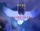济南婚礼威亚 上海婚礼威亚制作 高空威亚秀制作 上海浍影威亚