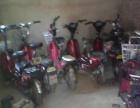 低价出售各种电动三轮车,旺旺平板车,电动自行车出租