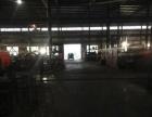 肥西上派2400平钢构厂房出租带行车