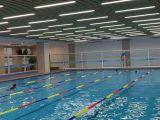 專業游泳健身