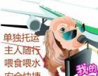 广州至全国宠物托运火车汽车空运市内接送