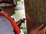 无锡市码头检测机构-码头安全检测报价