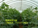 华北地区一级新型大棚骨架的生产集散地鸣远温室