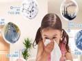 除甲醛、室内净化、上门检测、加湿净化器销售