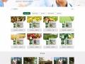 航迪,网站建设,推广信息群发,网站关键词排名