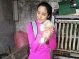竹鼠径过人工训养,呆萌可爱。