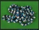 长春贝壳手链工艺品厂家,贝壳风铃制作,珊瑚稀有货源