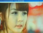 日本进口二手投影机 效果逼真 色彩鲜艳 底色纯