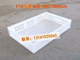北京格诺P10号塑料筐矮低果蔬配送筐600乘400乘100