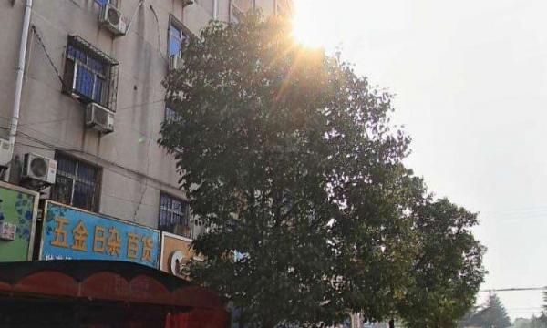 卧龙川光厂家属院 1室1厅 60平米 简单装修 押一付三