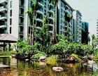 古典简约三房 海润滨江花园 居家温馨 设备齐全 期待您的入住
