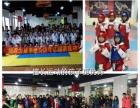 湘江世纪城力威专业跆拳道武术4岁可以开始学