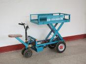 销量领先的平板车长期供应花棚平板车