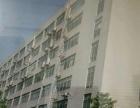 高新 柳州北路22号 自建大楼对外出租
