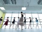 大兴枣园成人舞蹈培训古典舞中国舞芭蕾舞