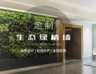 烟台长岛植物墙设计 烟台植物墙定制专家