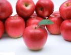 广州东大医院:蒸苹果可以治疗腹泻?这是真的吗