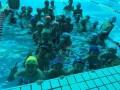 108游泳培训