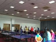 杭州游泳馆三楼乒乓球馆专业乒乓球培训
