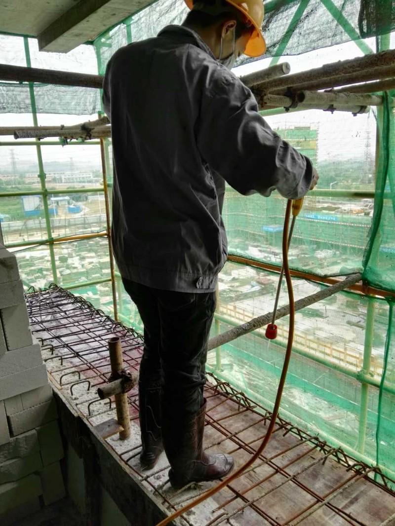 石龙白蚁防治中心 茶山白蚁防治所 中堂白蚁防治 专业高效