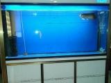 1.5米鱼缸,1200元,赔钱出售