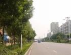 庐阳工业区荷塘路西一楼框架平方厂房