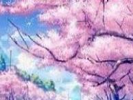 大连北九州跟团游_3月份日本九州线路计划