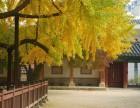 韩国留学基本知识介绍 韩国留学费用 上海添邦留学