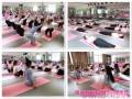 厦门零基础哪里学瑜伽【葆姿】瑜伽多种流派一站式学习