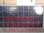 厂家直供宝迪金尚多晶硅260W太阳能电池板组件 光伏产品组件