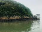 翡翠湾吃海吃海鲜