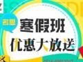 徐州阿卡名思初中年级数理化英语作文全科寒假补习班