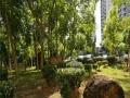 南海大道海德路 耀江花园 2房 家具齐全 大泳池 环境优美
