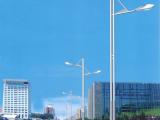 【振新】厂家直销 户外灯具:路灯,高杆灯,中杆灯,LED路灯