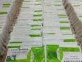 【ECOLIFE乳胶枕】泰国乳胶枕品牌诚邀您的加盟