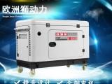 欧洲狮30kw内燃式发电机